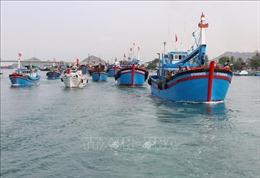 Khắc phục 'thẻ vàng'IUU: Từ ngày 5 – 14/11, đoàn thanh tra EC sẽ làm việc tại Việt Nam