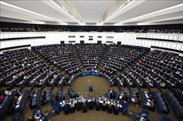 Hiệp định EVFTA và EVIPA giữa Việt Nam - EU được thông qua với số phiếu áp đảo