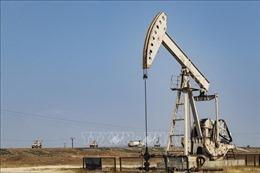 Giá dầu thế giới ghi nhận tuần thứ ba tăng giá liên tiếp