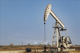 Giá dầu hướng tới năm tăng mạnh nhất kể từ năm 2016