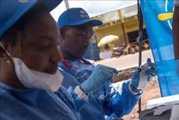 Nhật Bản thử nghiệm lâm sàng vaccine Ebola