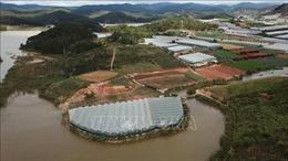 Lâm Đồng: Nỗi lo hồ cấp nước sinh hoạt của Đà Lạt suy giảm chất lượng