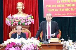 Phó Thủ tướng Trương Hòa Bình thăm và làm việc tại tỉnh Lâm Đồng
