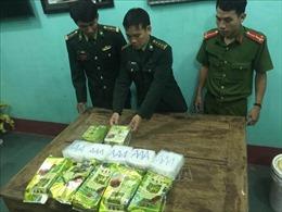 Khởi tố điều tra vụ 7 gói ma túy trôi dạt vào bờ biển Quảng Trị