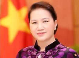 Hợp tác Nghị viện Nga - Việt: Hướng tới kết quả cụ thể và thực tiễn