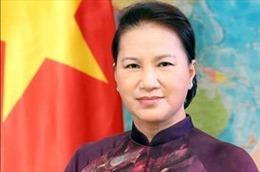 Tăng cường quan hệ hợp tác giữa Cơ quan lập pháp Việt Nam-Liên bang Nga