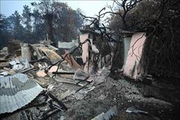 Mưa giông dập tắt cháy rừng ở miền Đông Australia