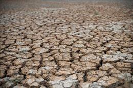 Xây dựng thêm 421 cơ sở trữ nước đối phó hạn hán kéo dài