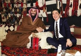 Nhật Bản tìm kiếm sự hợp tác của UAE nhằm hạ nhiệt căng thẳng Trung Đông