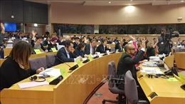 Bộ Công Thương đã hoàn thiện hồ sơ phê chuẩn Hiệp định EVFTA