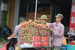 Mở 'những cánh cửa xuất khẩu mới'cho vải thiều Việt Nam