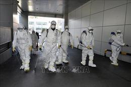 Hàn Quốc thêm 87 ca nhiễm nCoV, nâng tổng số lên 433 ca