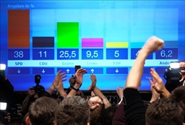 Đảng FDP ở Đức bị loại khỏi nghị viện bang Hamburg