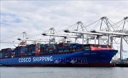Trung Quốc giảm một nửa thuế đối với hàng nhập khẩu từ Mỹ trị giá 75 tỷ USD