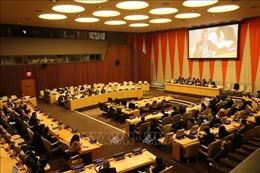 Nhiều nước đánh giá Việt Nam đã đảm trách xuất sắc vị trí Chủ tịch HĐBA