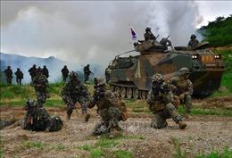 Dịch COVID-19: Mỹ - Hàn Quốc xem xét giảm quy mô các cuộc tập trận chung