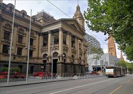Australia tạm ngừng các ca cấy ghép tạng do dịch COVID-19