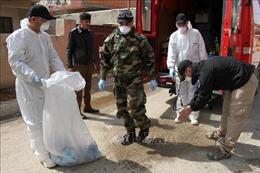 Dịch COVID-19: Hàng loạt quốc gia Trung Đông, châu Phi ghi nhận ca nhiễm mới