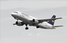 Các hãng hàng không châu Âu bắt đầu nối lại dịch vụ