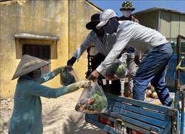 Ấm áp nghĩa tình ở vùng cách ly tại Ninh Thuận