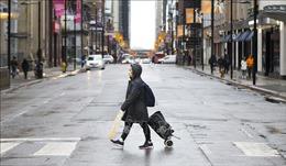 Canada chạy đua để đảm bảo nguồn cung trang thiết bị y tế
