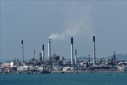 Giá dầu châu Á phiên sáng 18/5 vẫn gầnmức cao nhất trong hơn 1 tháng