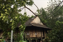 Khẩn trương giúp đồng bào các tỉnh miền núi phía Bắc khắc phục thiệt hại do mưa đá, gió lốc