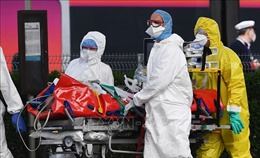 Kiều bào Việt Nam tại Pháp ủng hộ chống dịch COVID-19