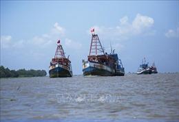 Phối hợp thực hiện giải pháp chống khai thác thủy sản bất hợp pháp