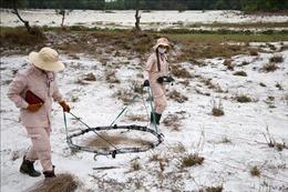 Đội nữ rà phá bom mìn ở Quảng Trị