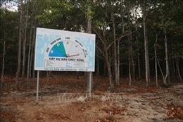 Cảnh báo cấp 5, Bà Rịa-Vũng Tàu triển khai nhiều biện pháp chống cháy rừng