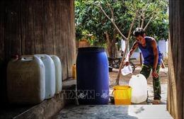 Ninh Thuận oằn mình chống khô hạn