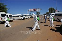 Nam Phi công bố kế hoạch nới lỏng lệnh phong tỏa do COVID-19