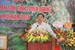 Tuyên Quang tiếp tục hoàn thiện, nâng cao các tiêu chí trong xây dựng nông thôn mới