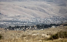 Palestine phủ nhận đối thoại với Mỹ về kế hoạch hòa bình Trung Đông