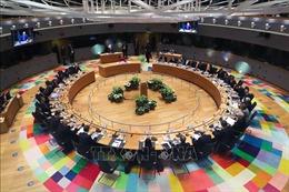 EU sẽ tiến hành hội nghị thượng đỉnh trực tiếp vào ngày 17/7