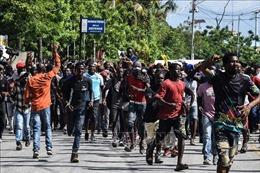 Liên hợp quốc ủng hộ cải cách hiến pháp để 'phục hồi' Haiti