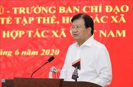 Phó Thủ tướng Trịnh Đình Dũng: Hợp tác xã phải lấy hiệu quả kinh tế làm thước đo
