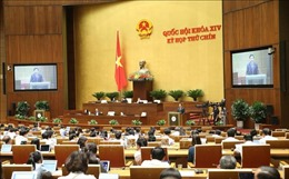 Quốc hội thảo luận Chương trình mục tiêu quốc gia phát triển KT-XH vùng đồng bào dân tộc thiểu số và miền núi