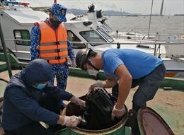 Phát hiện tàu chở hơn 3.500 tấnIlmenitekhông có hóa đơn, chứng từ