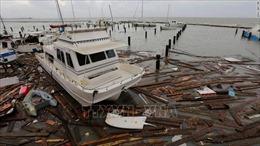 Bão Hanna đổ bộ Mexico; Mỹ phát cảnh báo bão tại Đại Tây Dương