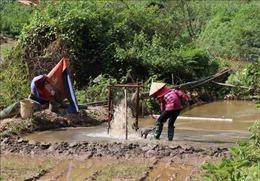 Lòng suối bị 'rút ruột' vì 'loạn' khai thác cát tại xã Chiềng Đông, Điện Biên