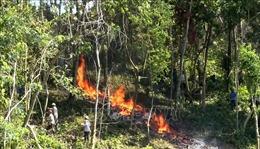 Thanh Hóa cấm rừng ở những nơi có báo động cháy từ cấp rất nguy hiểm trở lên