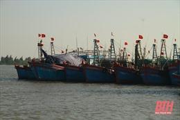 Tàu thuyền của ngư dân Thanh Hóa đã vào nơi tránh trú an toàn
