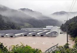 Lở đất và lũ lụt tại Hàn Quốc khiến ít nhất 30 người thiệt mạng