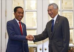 Singapore và Indonesia thảo luận mở 'làn nhanh'đi lại thiết yếu
