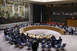 Mỹ thúc đẩy gia hạn cấm vận vũ khí đối với Iran