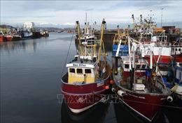 Anh và Na Uy đạt thỏa thuận về ngư nghiệp