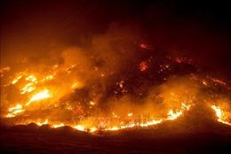Cháy rừng thiêu rụi diện tích kỷ lục tại bang California