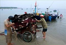 Học sinh Đà Nẵng được nghỉ học 2 ngày để tránh bão số 5
